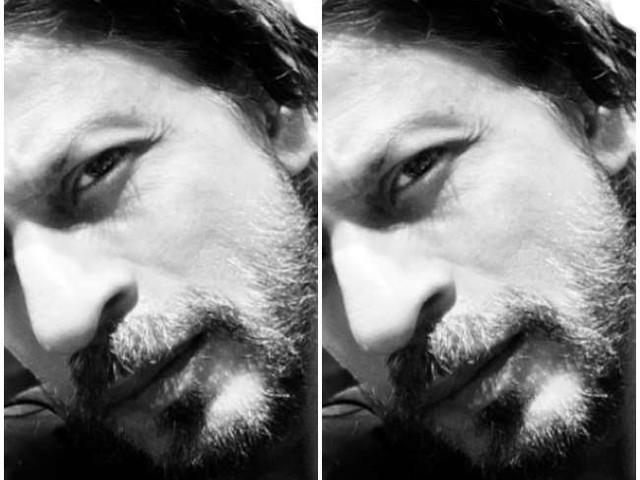 #Asksrk: फैन बोला फिल्में नहीं तो गाने ही कर लो, शाहरुख खान का जवाब जीत लेगा दिल