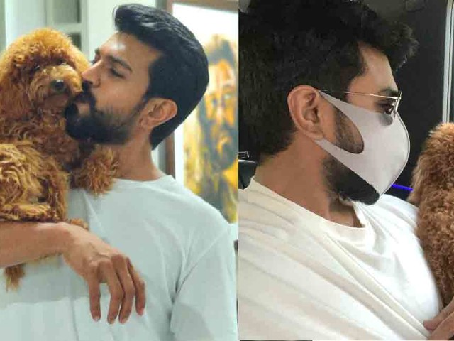 Ram Charan is all hearts for his Poodle pup; check out