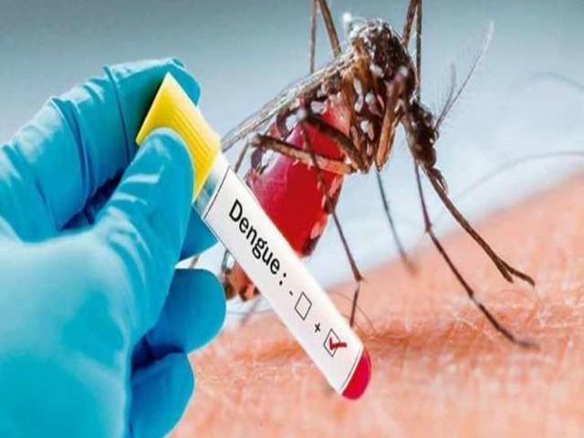 उत्तर प्रदेश और बिहार समेत कई राज्यों में कहर बरपा रहा डेंगू, लापरवाही पड़ सकती है भारी