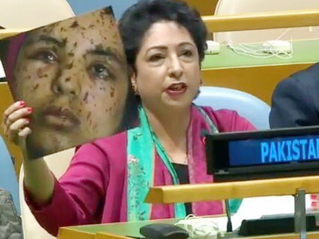 Pak envoy uses fake image at UN, left red-faced