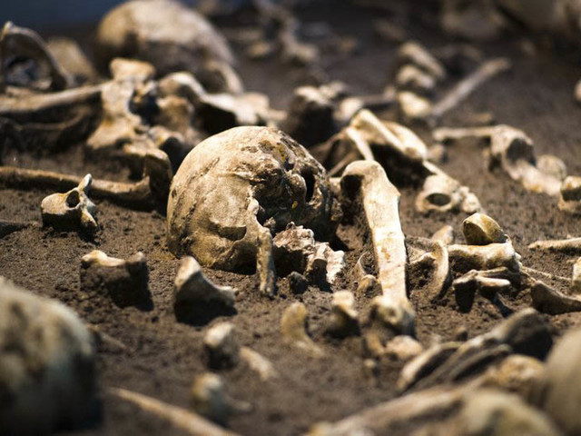 Ancient treasures on show in Germany reveal turbulent past