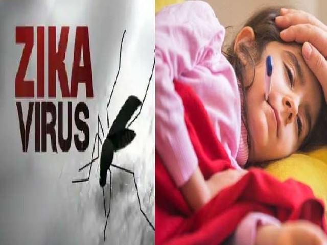 जीका वायरस को लेकर अब मध्य प्रदेश में भी अलर्ट, जानें- किस इस तरह फैलता है इसका बुखार और क्या है इलाज