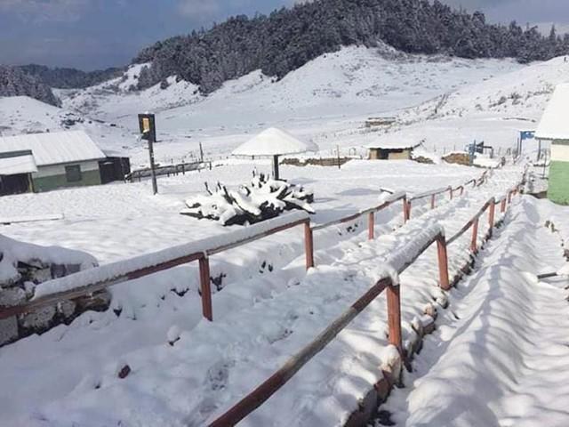 Wildlife poaching up after snowfall in Bajura