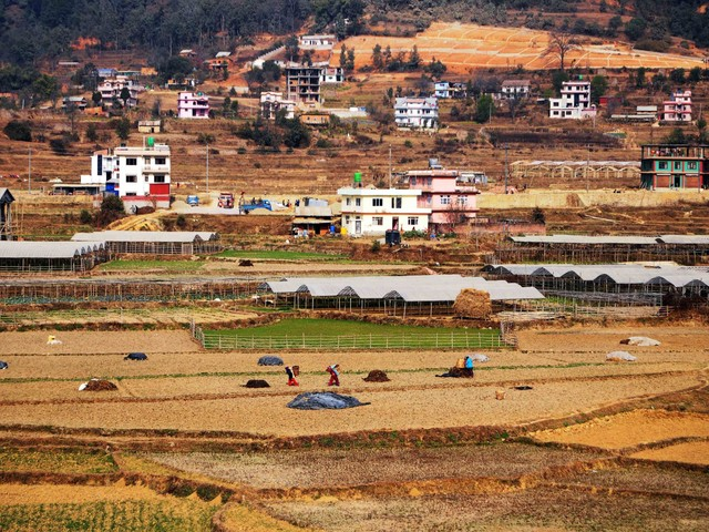 In Pictures: Farms of Lalitpur