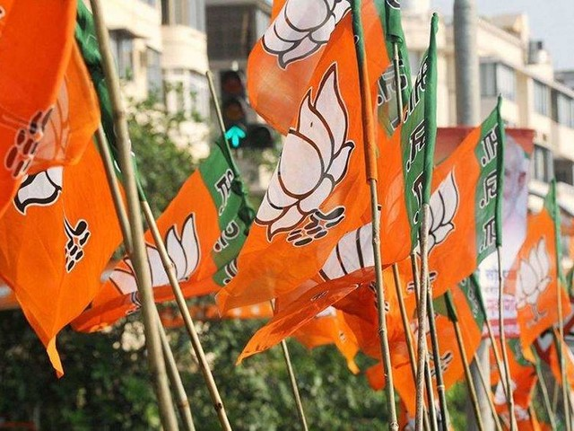 UP women panel member quits, resigns from BJP too