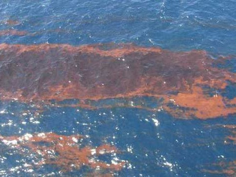 India gives over 2k ltr of pollution dispersant to Maldives