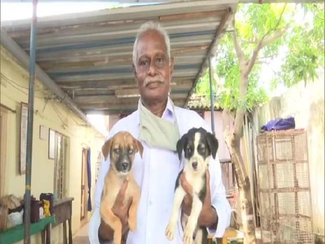 अपनी पूरी कमाई करते हैं कुत्तों के इलाज पर खर्च, अब मिल रहा है लोगों का भी सहयोग