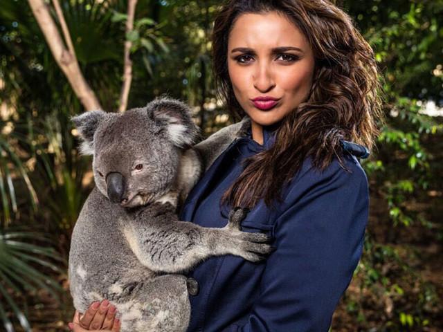 Parineeti Chopra trolled for her pic cuddling a Koala