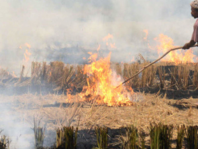 CII adopts 100 villages in Punjab, Haryana to mitigate pollution caused by stubble burning