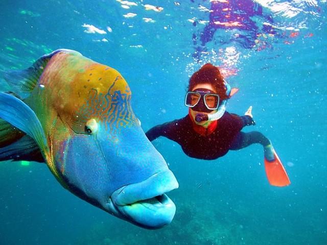 Giornata Mondiale degli Oceani, Mariasole Bianco: «Stop alla plastica con i ragazzi della Generazione blu»