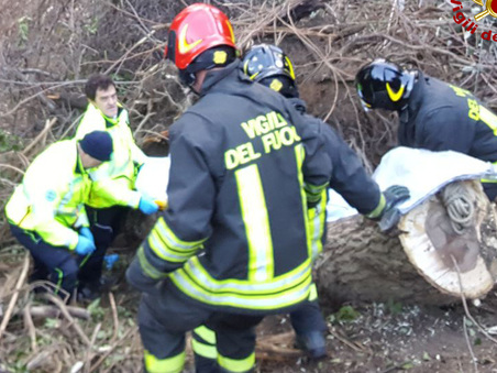 Vento forte, tragedia nel bosco: pensionato ucciso da un tronco