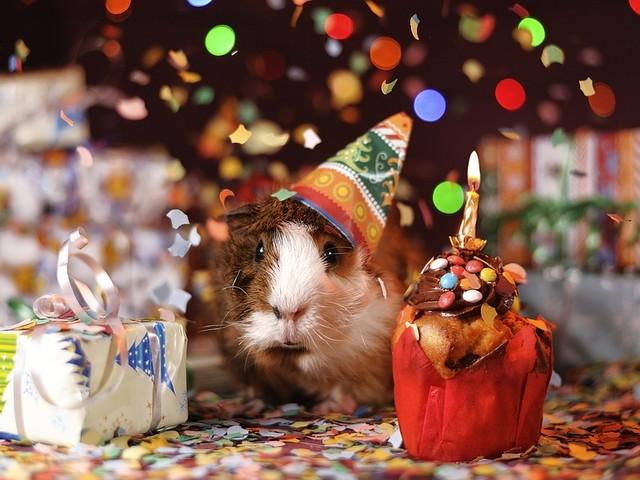 Auguri di Buon Compleanno simpatici, divertenti e originali