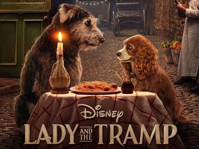 Lilli e il vagabondo trailer su Disney+