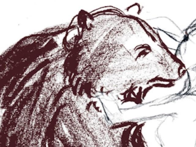"""Tradurre da scrittrice. Intervista a Veronica Raimo su """"Orso"""" di Marian Engel"""