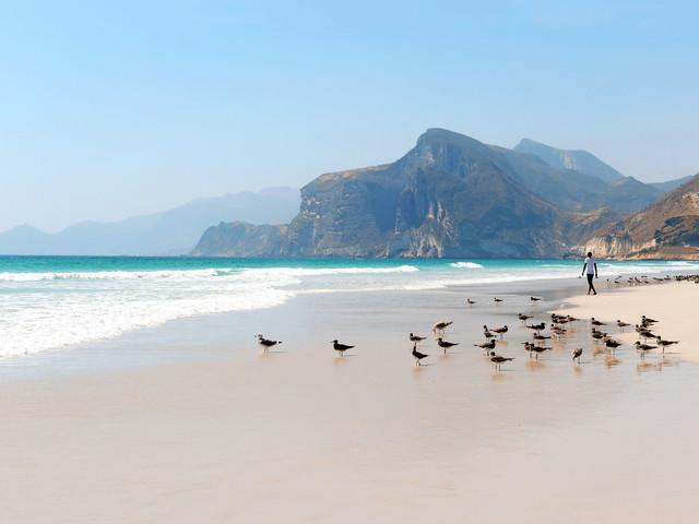 Dhofar: spiagge infinite e deserto, il paradiso nel sud dell'Oman
