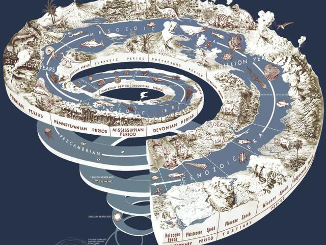 Nelle foreste tropicali le origini dell'Antropocene: impatto umano antecedente all'era industriale