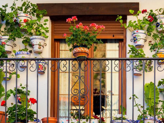 """""""Bonus verde"""" per balconi, giardini e terrazzi: come funziona e quanto si risparmia di tasse"""