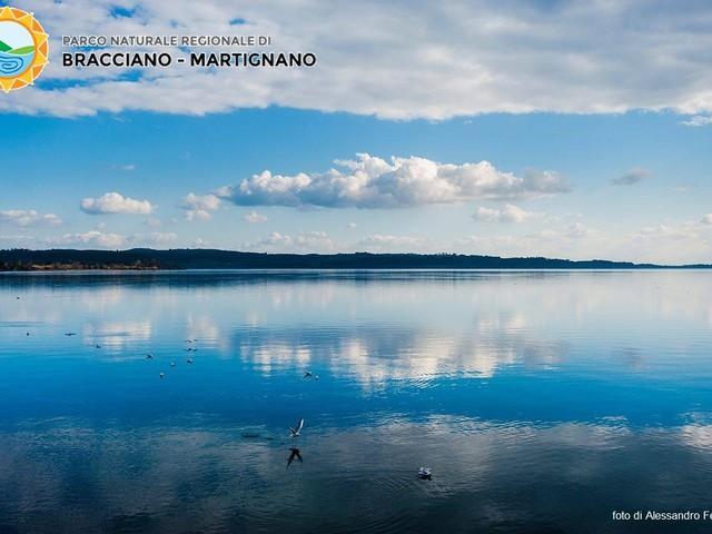 Captazioni di acqua dal Lago di Bracciano: la Corte di Cassazione boccia Acea e Ato 2