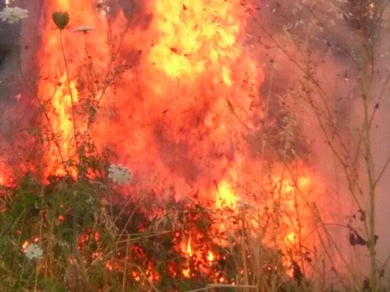 Emergenza incendi: continua l'impegno dell'Aeronautica Militare nella lotta contro i roghi in Sicilia