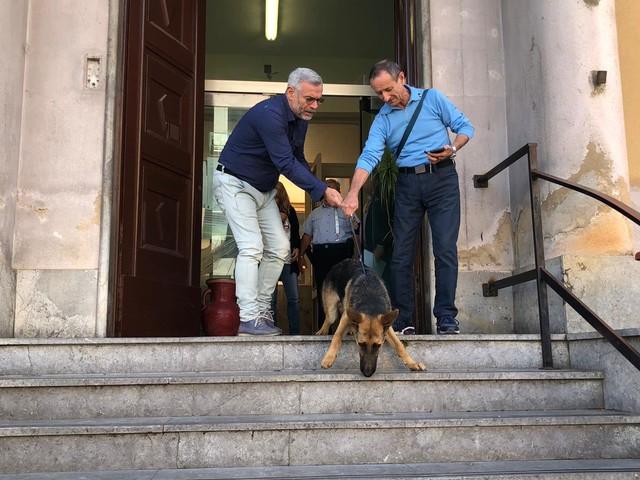 Solange lascia il Comando di Polizia Municipale: ha trovato una famiglia