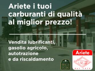 "(M5S): ""Fontana, vuoi il nucleare tra Cremona e Mantova?"""