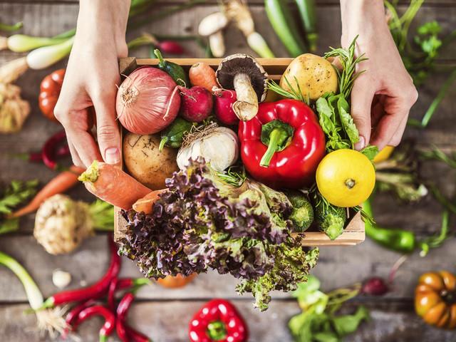 Agricoltura, il Senato approva la legge sul biologico