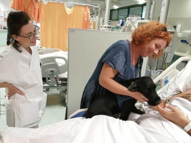 Empoli: Nello è il primo cane a essere entrato nel reparto di terapia intensiva