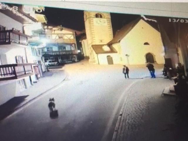 Un lupo in centro a Canazei immagini dalla telecamera ma non c'è ancora conferma