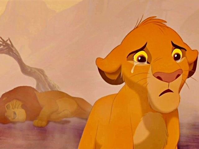 Una cagnolina piange guardando Il Re Leone: il video diventa virale e commuove tutti