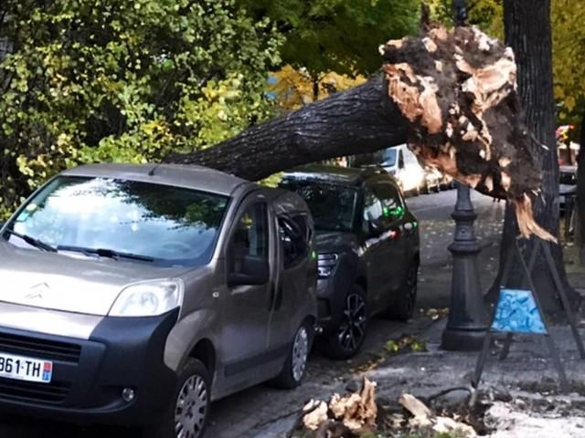CRONACA METEO. La TEMPESTA BARBARA investe l'ovest Europa. Allagamenti e ingenti danni per il forte vento