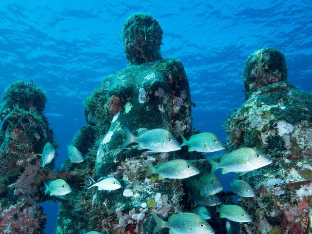 Australia: arriva il primo museo sottomarino