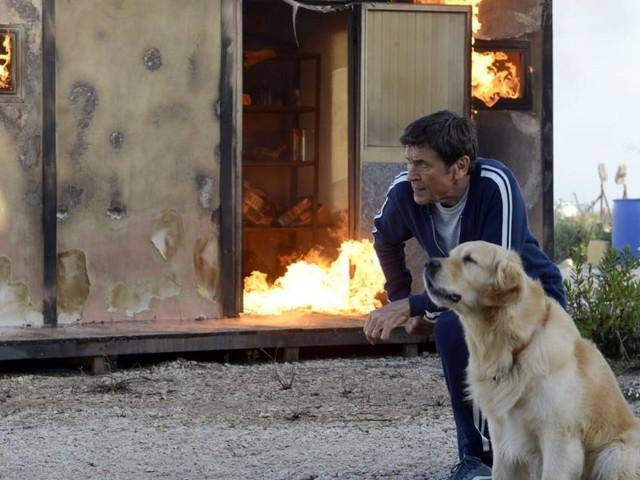 'L'isola di Pietro 3', 1^ puntata disponibile su Mediaset Play: Elena subisce un lutto