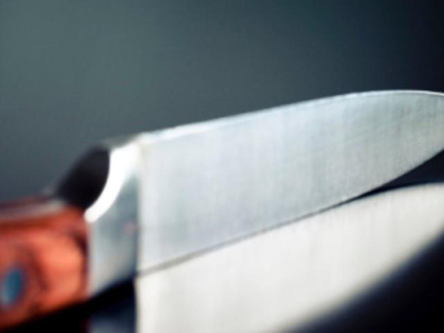 Cremona, un giovane di 20 anni uccide la madre e si dà alla fuga