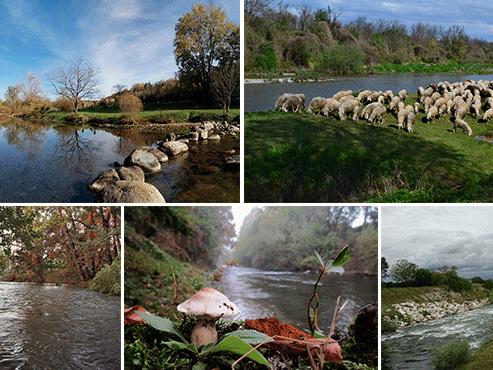 Federazione amanti del Chiese, sì alla tutela del fiume, avanti con le vie legali