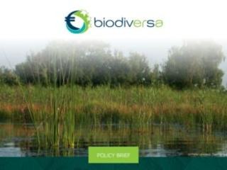 """Citizen science e """"cambiamenti sociali fondamentali"""" per invertire il declino della biodiversità"""