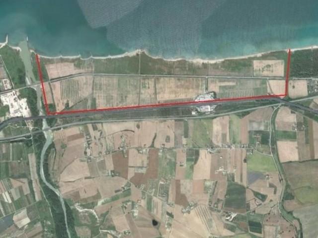 Progetto South beach in Molise, Legambiente: basta consumo di suolo per un turismo stile anni '80