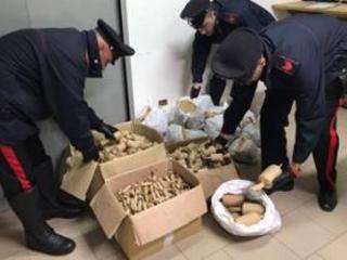 Catanzarese sorpreso con migliaia di fuochi pirotecnici Denunciato dai carabinieri in un controllo nel Vibonese