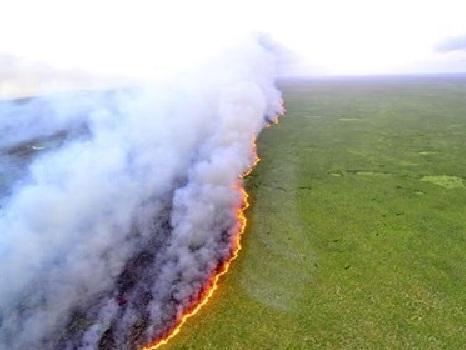 Cielo nero sul Brasile. Greenpeace: Amazzonia sotto attacco, nel 2019 gli incendi aumentati del 145%