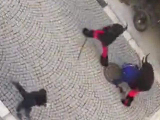 Krampus, botte durante la sfilata di San Nicola a Vipiteno: demoni mascherati contro la folla