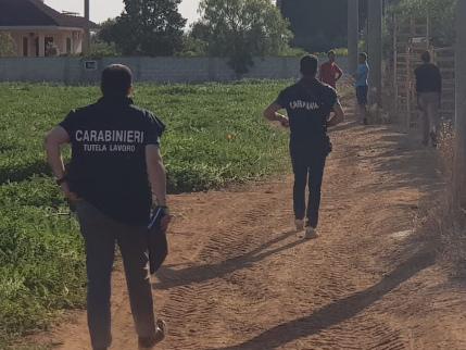 Puglia, la task force dei carabinieri ha messo ko i caporali