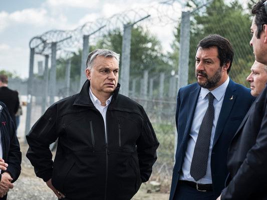 Quella di un muro anti-migranti al confine tra Friuli e Slovenia è un'ipotesi sul tavolo