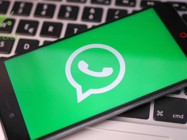 WhatsApp Business: nuovi dettagli e immagini