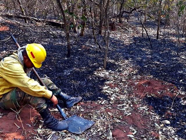 """Amazzonia in fiamme, Bolsonaro mobilita l'esercito e manda un messaggio ai leader G7: """"Non usate gli incendi per imporre sanzioni"""""""