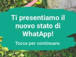"""WhatsApp, utenti in rivolta per l'eliminazione dello """"stato"""""""