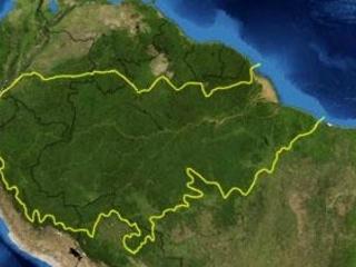 La Foresta Amazzonica (o Amazzonia)