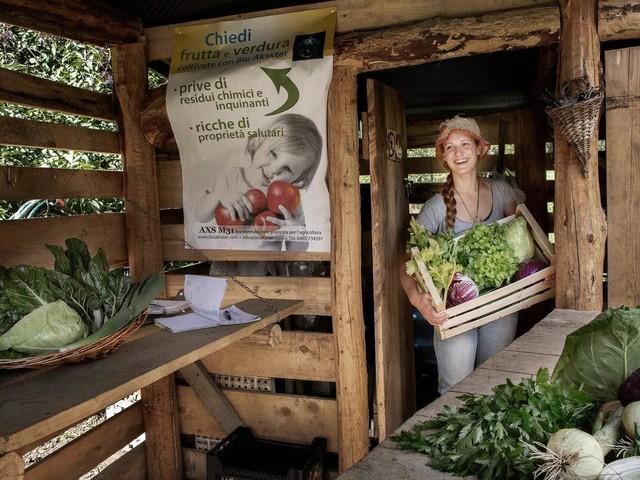 Sostenibilità: a Ossana il supermercato senza plastica, solo sfuso e locale