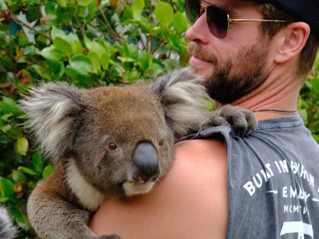 Elsa Pataky e Chris Hemsworth, un amore di Australia