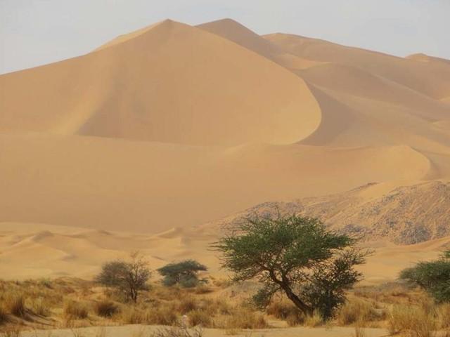 Camper Wild Trek: Dalla Sicilia a Capo Nord, il viaggio Green di Fabrizio Rovella, l'uomo del Sahara