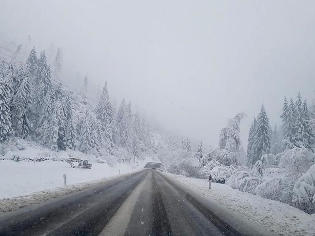 Tutta la regione imbiancata caos neve in Alto Adige decine di strade chiuse