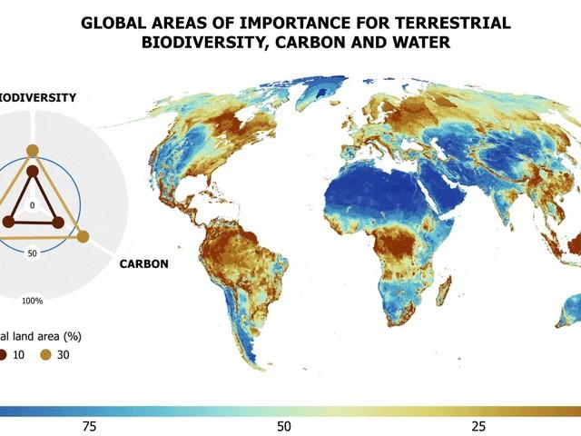 Proteggere il 30% della Terra potrebbe salvaguardare il 70% di tutte le specie animali e vegetali